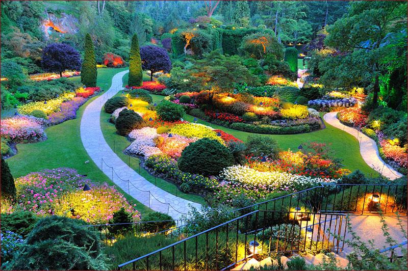 Garden Design By Ziba | Ziba Design & Construction