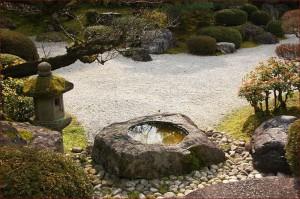 Ziba Designs Zen Gardens