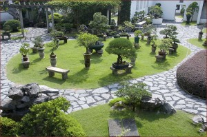 Japanese & Bonsai Gardens