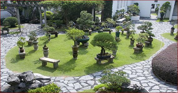 Japanese U0026 Bonsai Gardens By Ziba Design And Construction